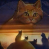 we are the W A R R I O R S ⟡ a Warrior Cats Mix