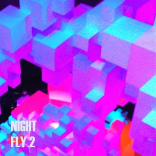 NIGHT FLY 2