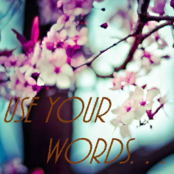 Use Your Words. . .