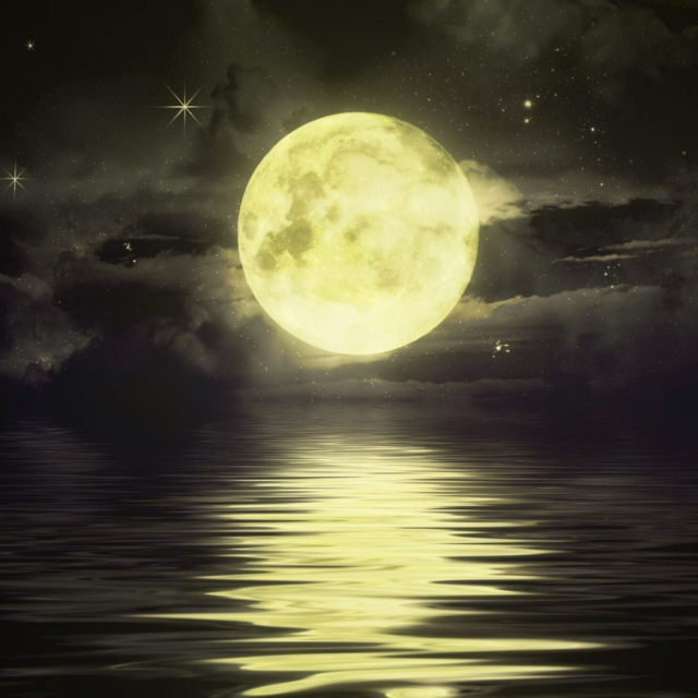 The strategy of the moon is to match its period of rotation to revolution and thus preserve its dark side which is the strategy of many beautiful and terrible things.