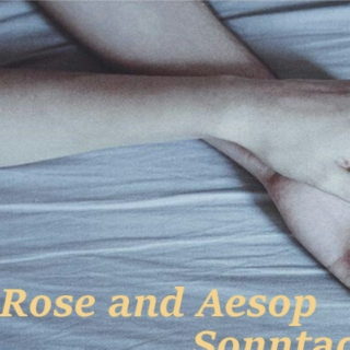 Rose and Aesop Sonntag