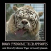 downsyndrome tiger approves of this playlist..