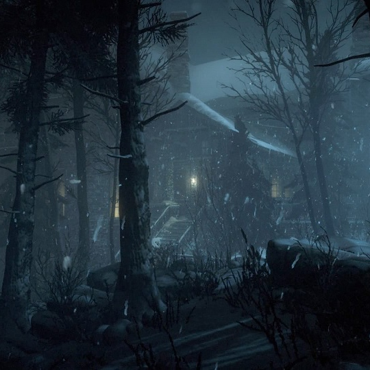 a night in blackwood pines