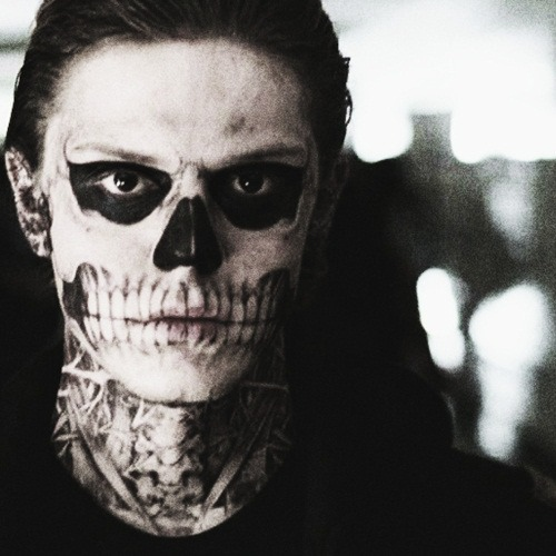 For Tate Langdon / / AMERICAN HORROR STORY / /