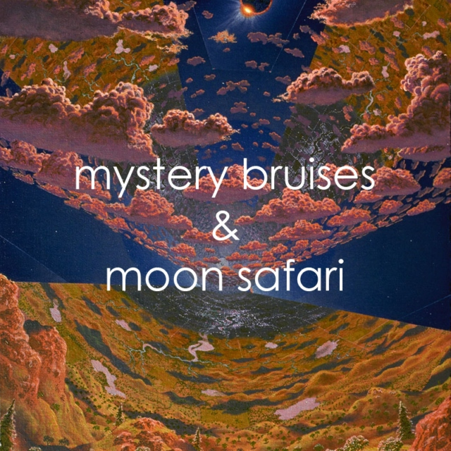 mystery bruises & moon safari
