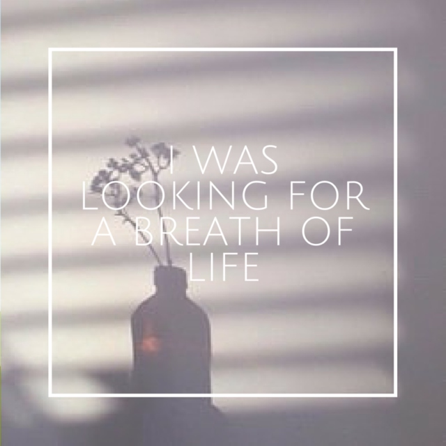 i was looking for a breath of life