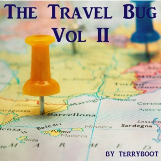 The Travel Bug Vol II
