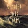 iv. weather your storms (weeks 27-42)