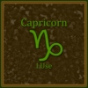 Capricorn- Steps to Success