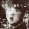 Butterfly 나비