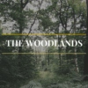 The Woodlands