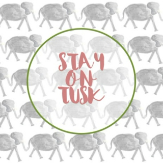 stay on tusk