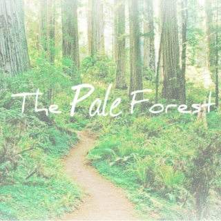 The Pale Forest