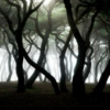 Dark Ambient Music for Relaxing and Dreaming