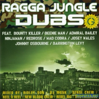Bram & Duss #21: Ragga Jungle Dubs