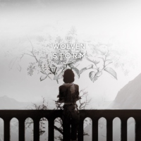 |the wolven storm|
