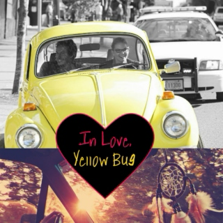 In Love, Yellow Bug