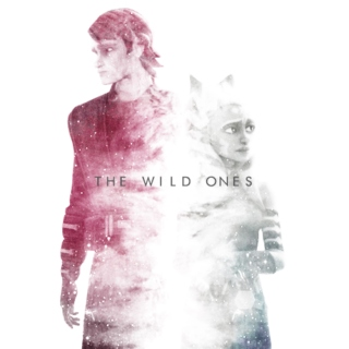 Momento Vol. I: The Wild Ones