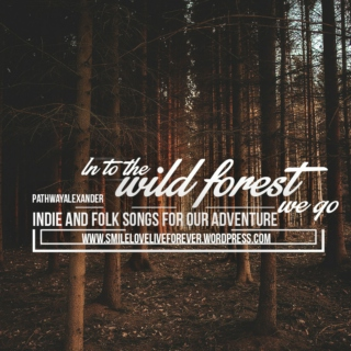 In to the wild forest we go, journey of our lifetime, indie and folk songs.