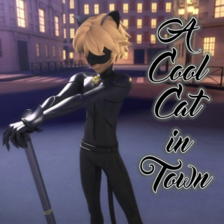 A Cool Cat in Town [a Chat Noir fanmix]