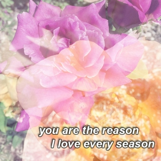 you are the reason, I love every season; for girls who love girls