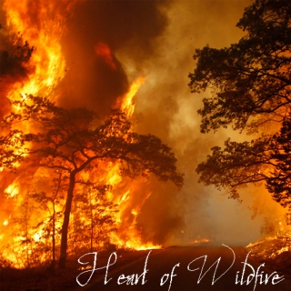 Heart of Wildfire