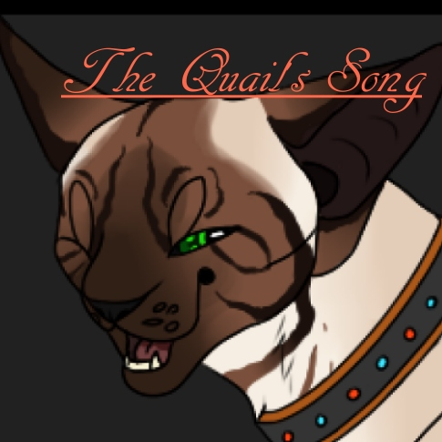 The Quail's Song