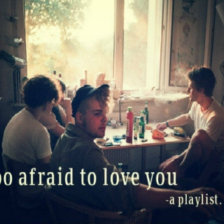 Too Afraid to Love You