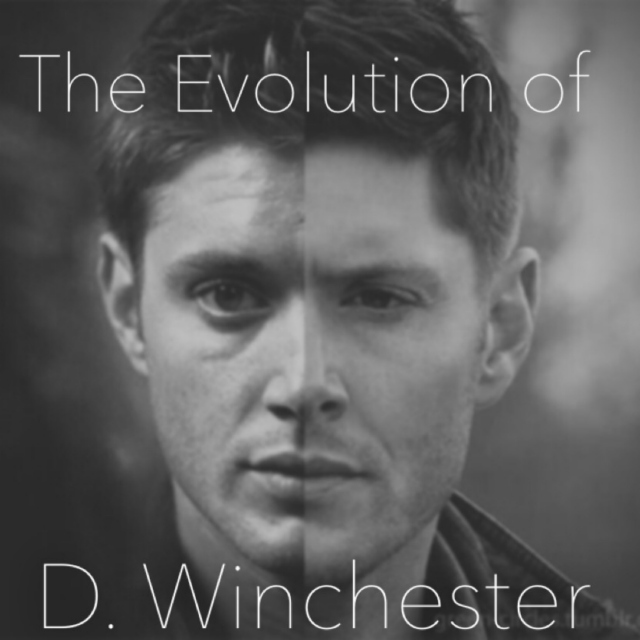 The Evolution of D. Winchester
