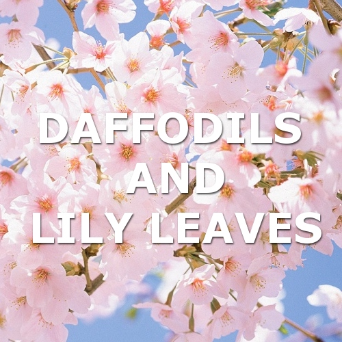 daffodils and lily leaves