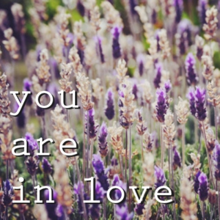 you are in love