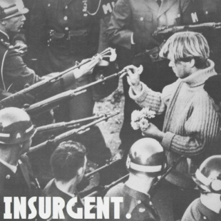 you are INSURGENT.