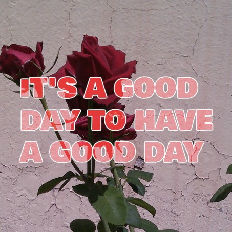 IT´S A GOOD DAY TO HAVE A GOOD DAY!