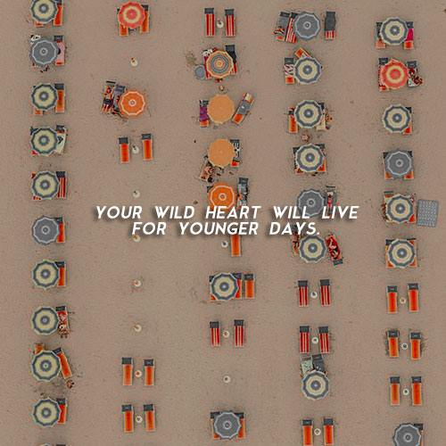 your wild heart will live for younger days.