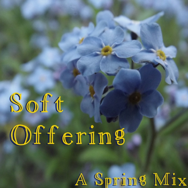 Soft Offering: A Spring Mix