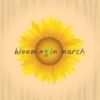 ❀ blooming in march ❀