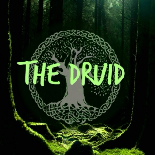 ☘The Druid☘