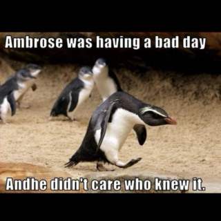 Ambrose was having a bad day