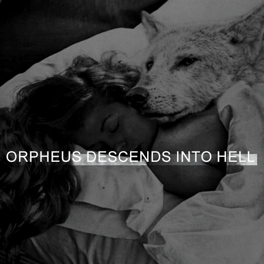 ORPHEUS DESCENDS INTO HELL ● hassan