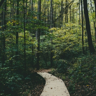 Environmental Science Playlist