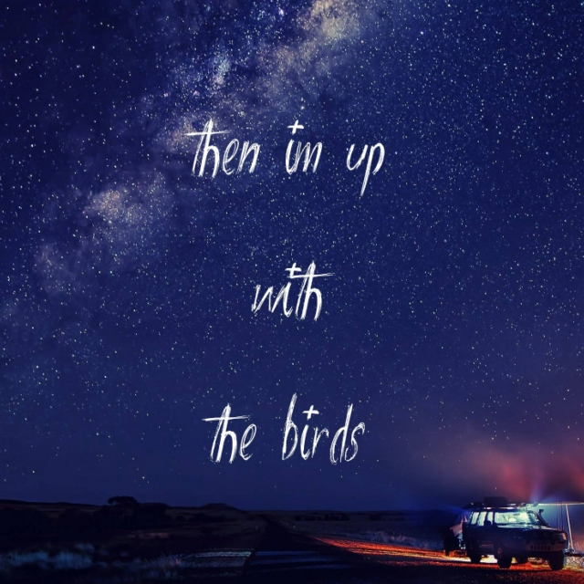 then im up with the birds