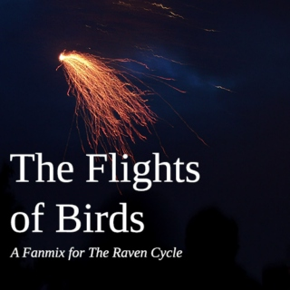 The Flights of Birds: Raven Cycle Fanmix