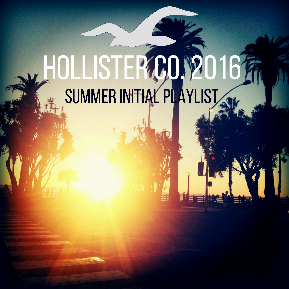 playlist for hollister 2013