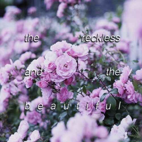 The Reckless and the Beautiful
