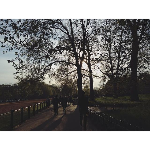 Hyde Park and its sounds