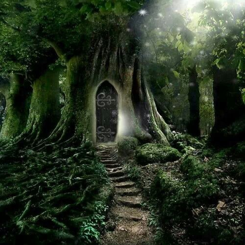Enchanted Forest Dream
