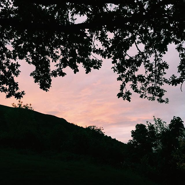 folky indie chill songs