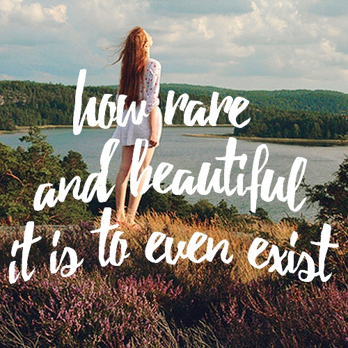 how rare and beautiful it is to even exist