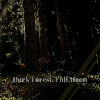 Dark Forest, Full Moon