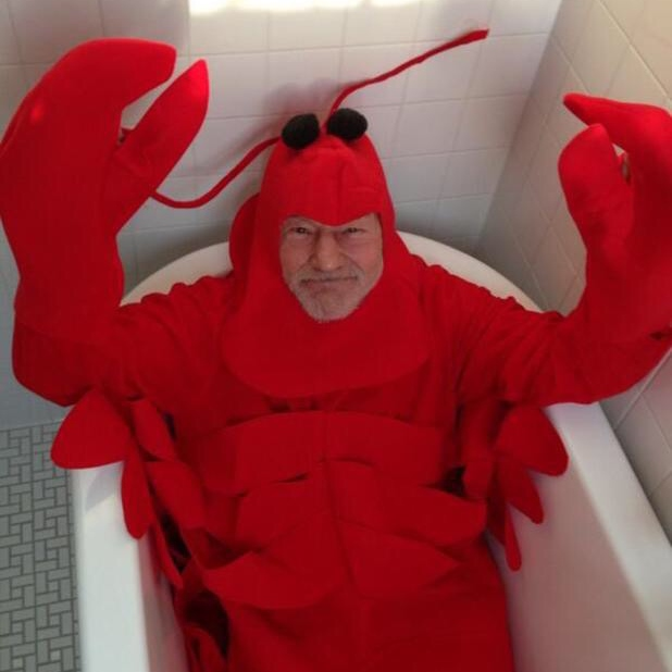 rock lobsters show me your claws